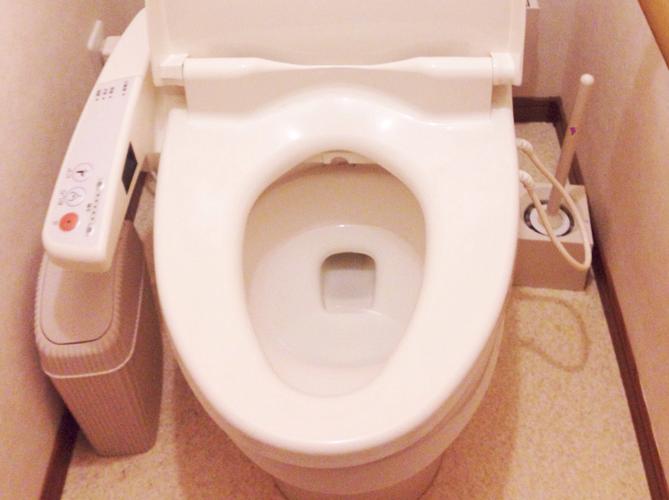 トイレ パイプユニッシュ